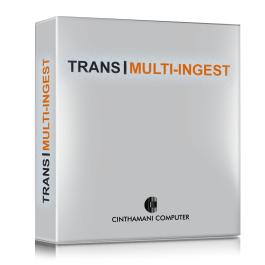 Trans Multi Ingest